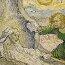 Vincent van Gogh: The Raising of Lazarus